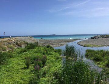 Pulizia tombinatura e sistemazione sfocio alveo a mare